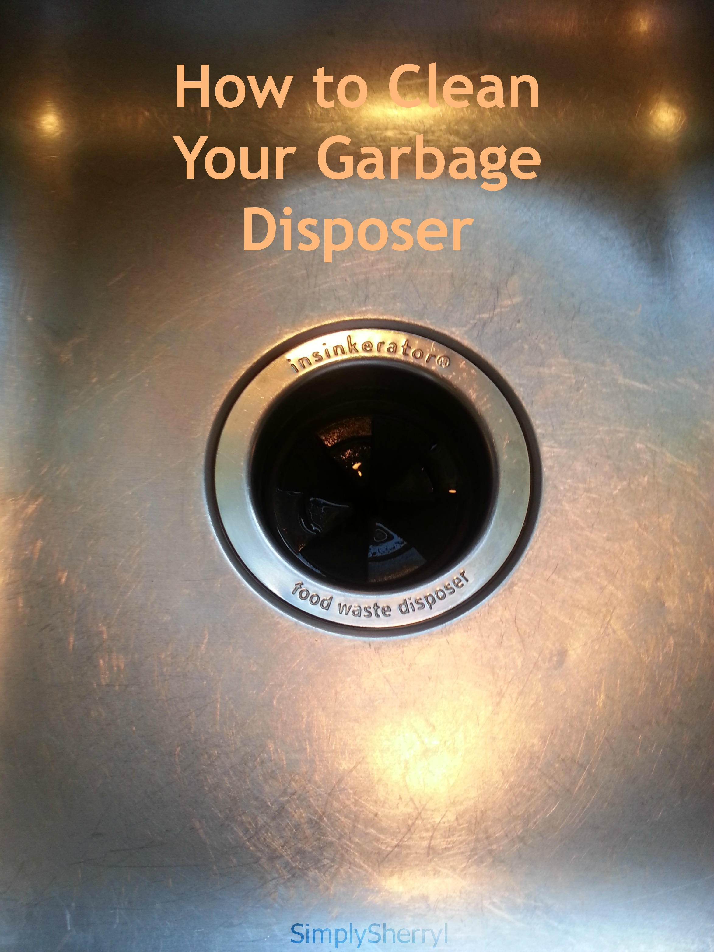 how to clean your garbage disposer simply sherryl. Black Bedroom Furniture Sets. Home Design Ideas