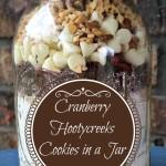 Cranberry Hootycreeks Cookies in a Jar {Free Printable}