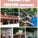 Perry's Cave Family Fun Center {Review}