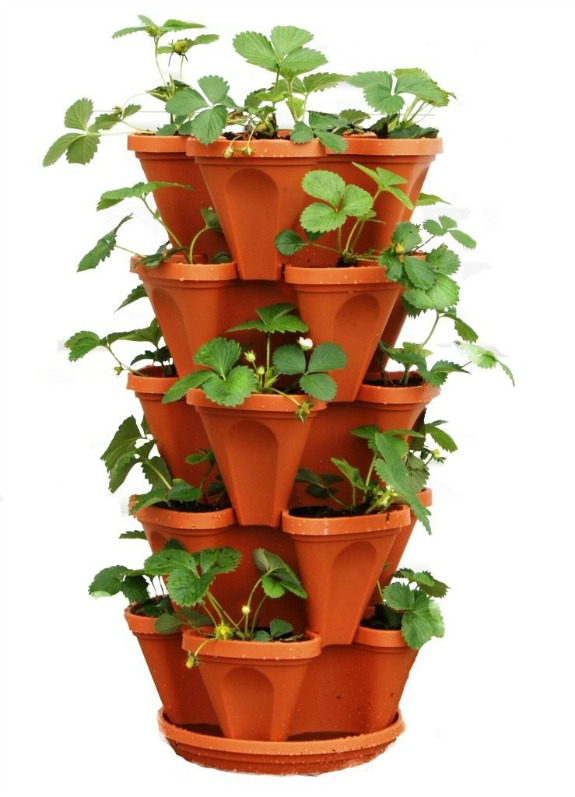 Mr. Stacky 5-Tier Strawberry Planter Pot