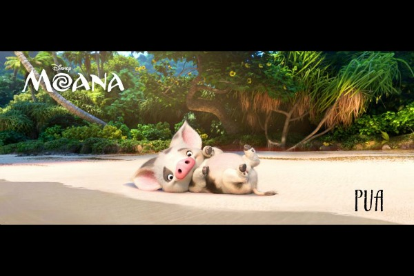 Moana Posters and Video