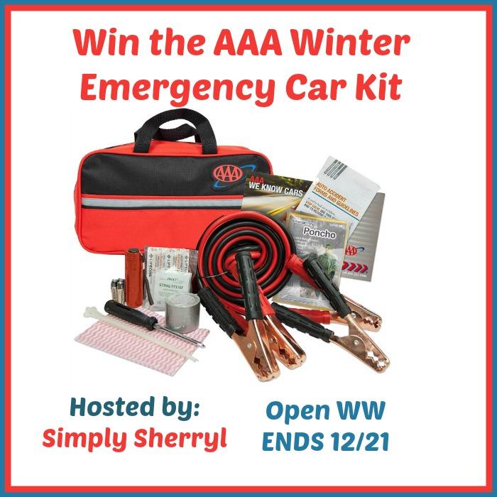 Winter Emergency Road Kit by AAA